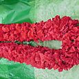 Lei: Red Carnation Double