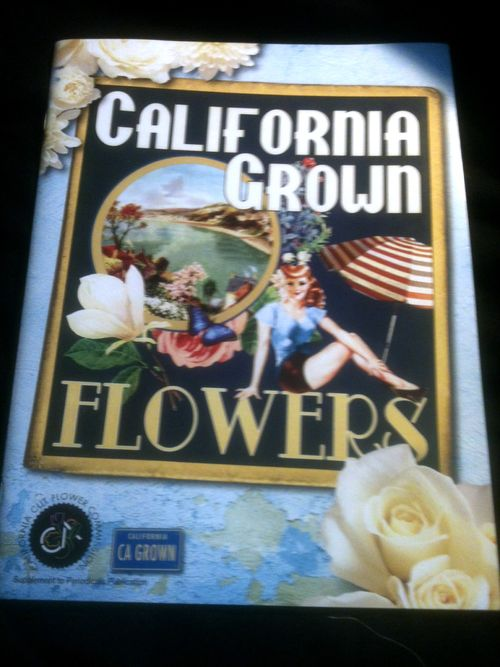 Ca_grown_book